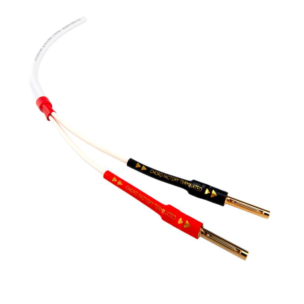 Cablu de Boxe Chord Odyssey Metraj